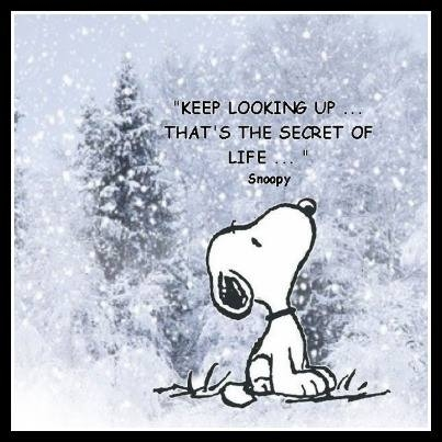 snoopy-keep-looking-up-2
